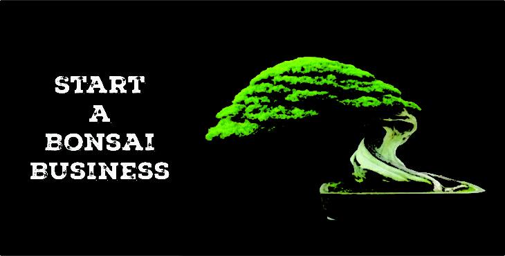 बोनसाई व्यवसाय start bonsai plant business