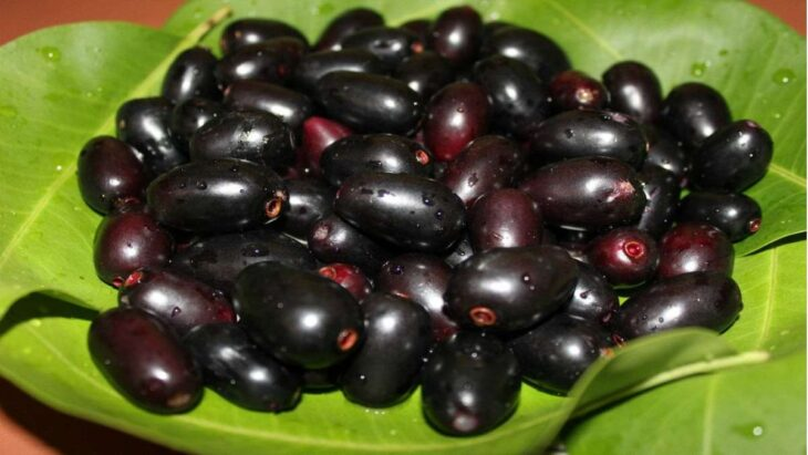 Black Berry benefits