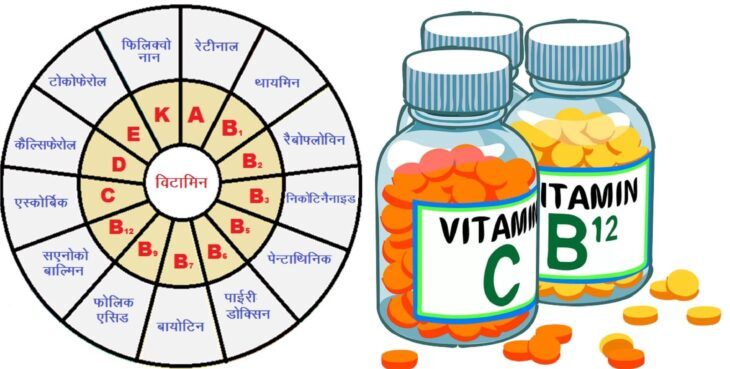 Vitamins : what is vitamins and important types of vitamins with chemical