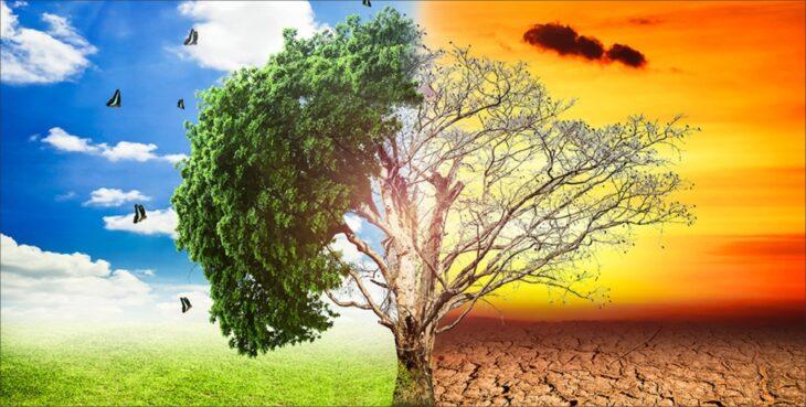 अब ग्लोबल वार्मिंग के कारण प्राकृतिक आपदाएँ हर साल होंगी